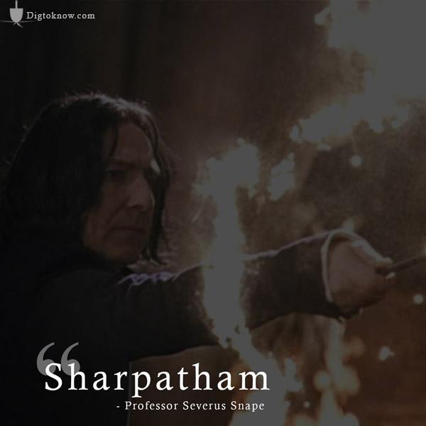 Snape Stupefy spell