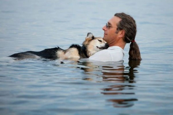 The water soothes the sick dog's pain