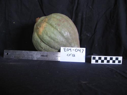 E04-047 CF12 Fr7