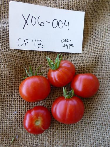 X06-004 CF13 Fr7