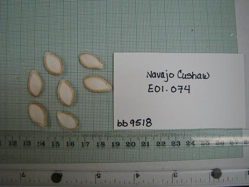 E01-074 bb9518 S