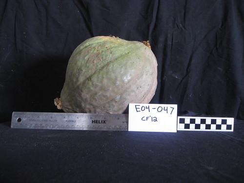 E04-047 CF12 Fr9