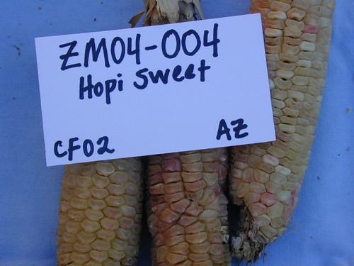 ZM04-004 CF02 Fr3
