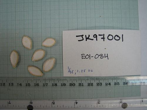 E01-084 JK97001 S2