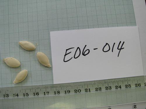 E06-014 MD8486 S