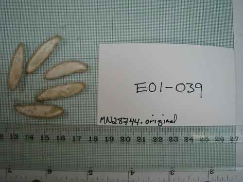 E01-039 MN28744 S