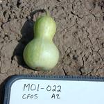 M01-022 CF05 Fr4