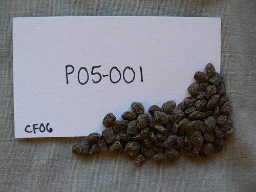P05-001 CF06 S1