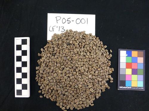 P05-001 CF13 S
