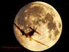 night flight watermarked