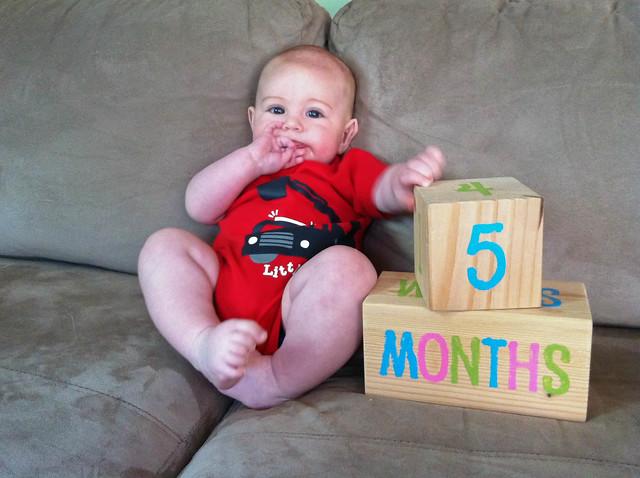 05 months-4