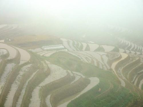 C-Guangxi-Pingan-Terrasse des 7 etoiles (41)