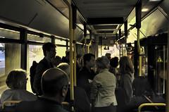 Soleil levant depuis le fond du bus.