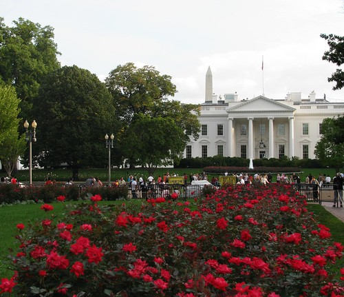 The White House by chris kats