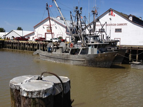 Steveston, BC - boats and cannery