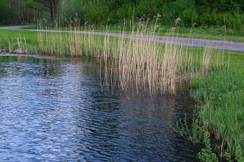 nature water spring estonia pentax vesi eesti loodus kevad k7 pentaxk7 virvendus