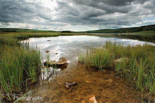 Malham Tarn by Dave Brightwell