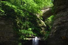 Matthiessen State Park Lower Dells 313