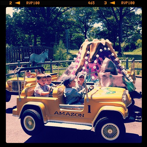 Driving the jeep at the Boston zoo