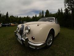 automobile, jaguar xk120, vehicle, jaguar xk150, antique car, classic car, vintage car, land vehicle, luxury vehicle,