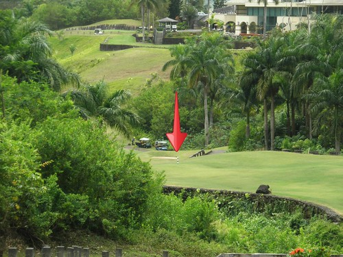 Royal Hawaiian Golf Club 245b