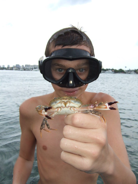 Alex catches a big swimming crab.