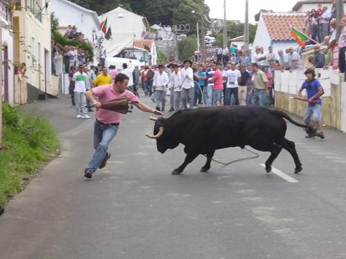touros1