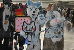 Wii Raver and Nyancat