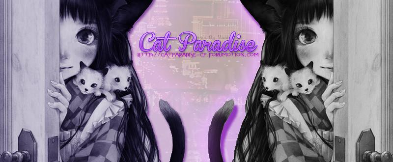 {♥} Cat Paradise {♥}