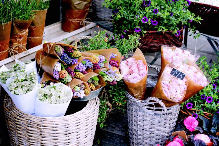 flower market, bergen