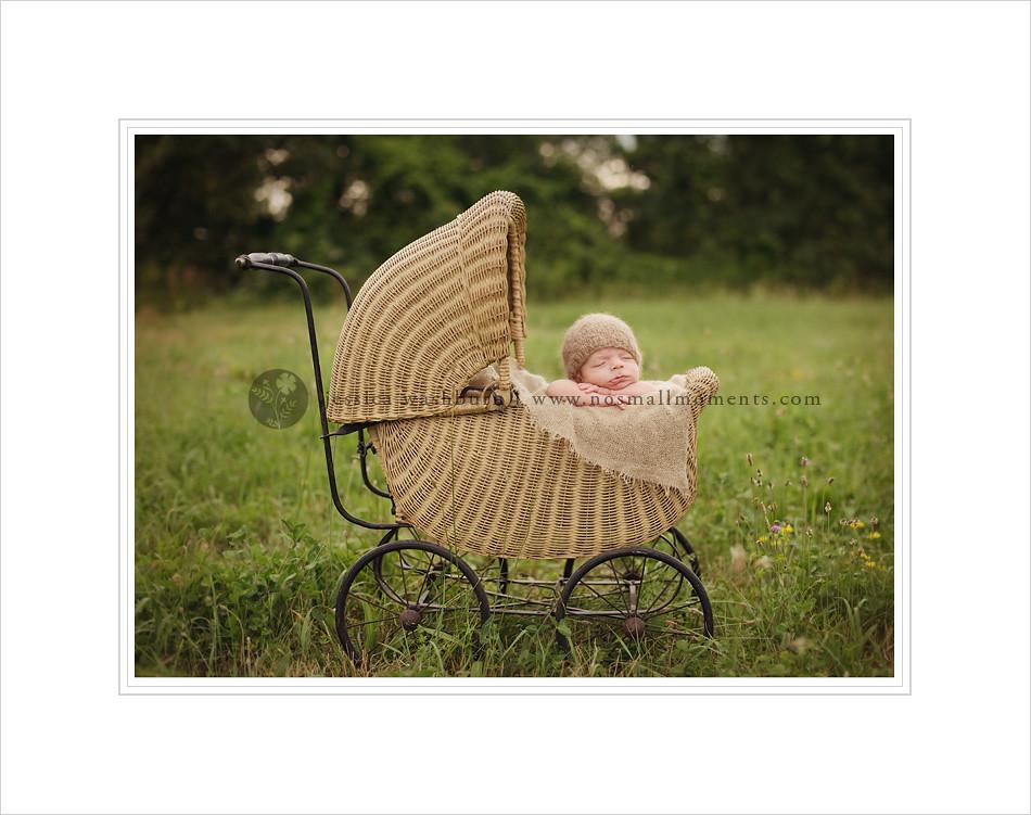Saratoga newborn photography