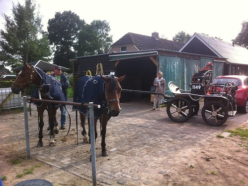 Getting the horses ready for the ride