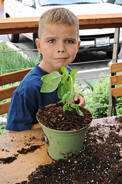 Children's Vegetable Garden Planting at Greenleaf Gourmet Chopshop