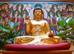 Buddha and friends