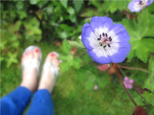 Feet and flower by PhotoPuddle