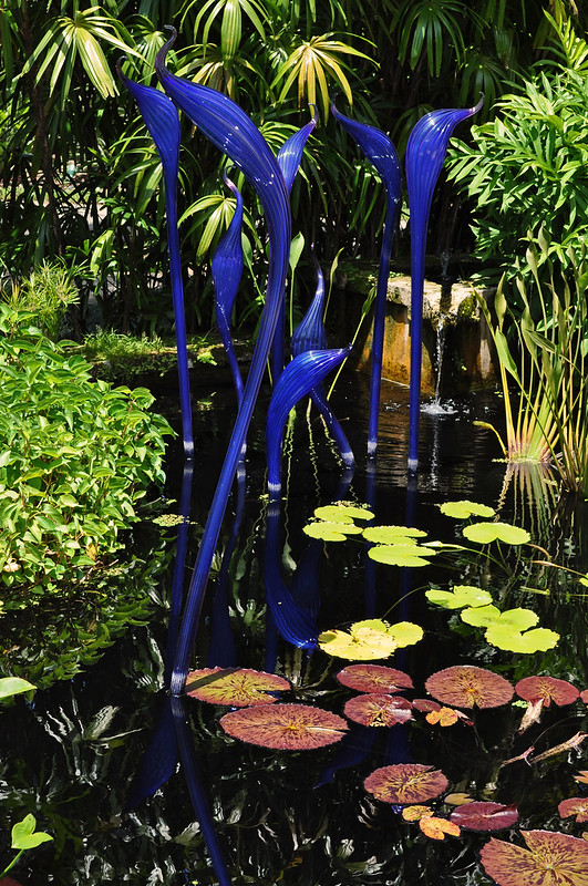 Chihuly in the Water