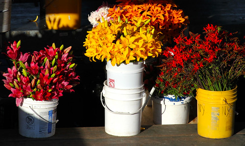Pike Place Market - Flowers