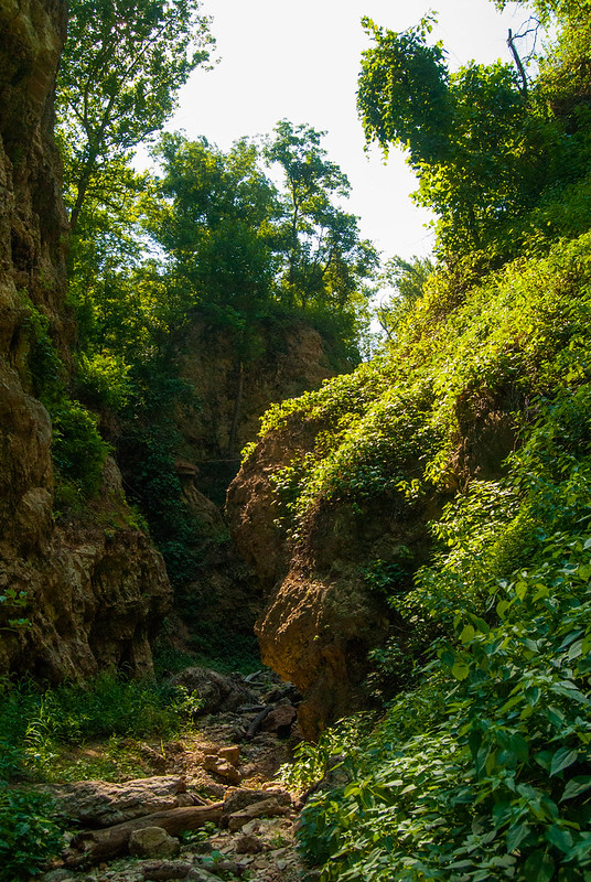 Grand Gulf State Park-July 22, 2012-_DNR0447.jpg