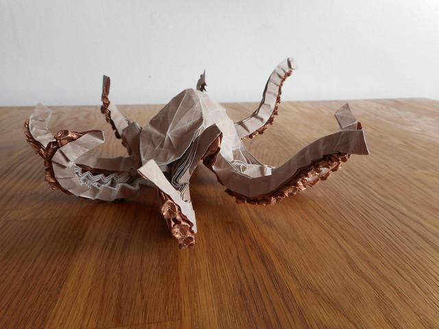 Origami Octopus - Bart, Nikon COOLPIX S3700
