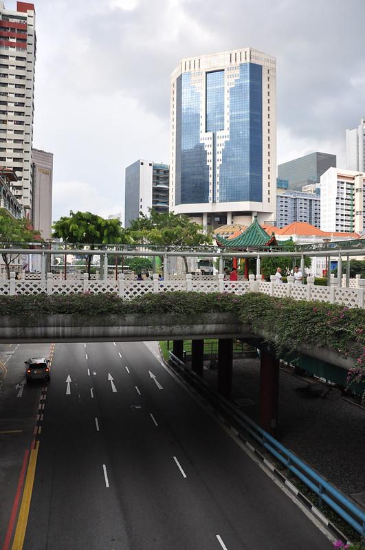 Растительность на надземном пешеходном переходе в Сингапуре