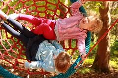 Web Swing 2