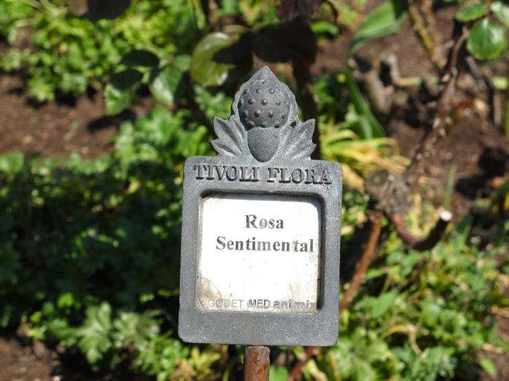 Tivoli flora
