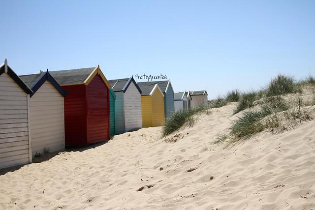 Prettygreentea huts