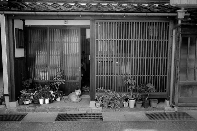 カナザワ・ビオゴン・モノクロ計画 #1 / Kanazawa Biogon Monochrome Project #1