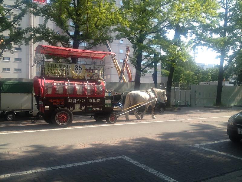 札幌市内の馬車