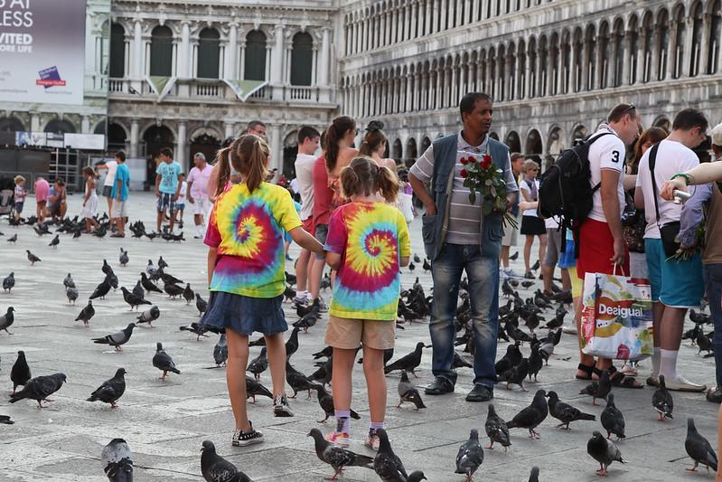 Venice Pigeons