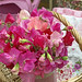 Pink Sweet Peas in a Basket