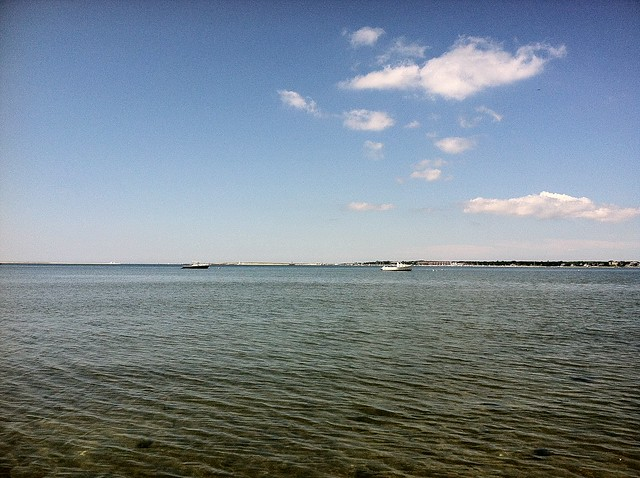 Lewis Bay
