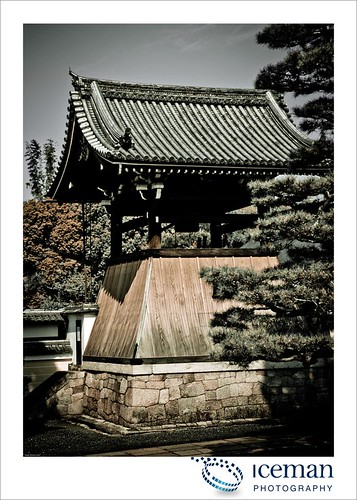 Myoshin-ji Temple 379