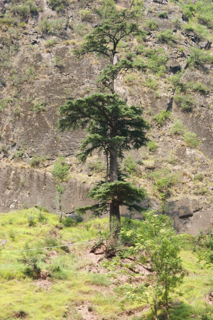 """MJC Summer 2012 Excursion to Neelum Valley with the great """"LIBRA"""" and Co - 7582023838 b50da022dc b"""